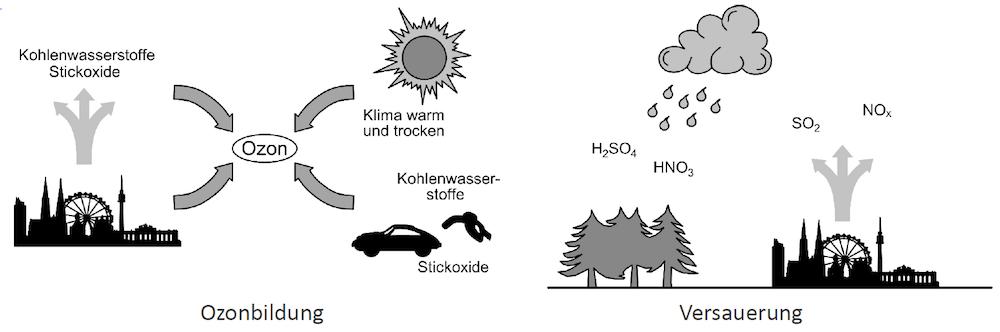 Outputorientierte Indikatoren - Ozonbildung, Versauerung
